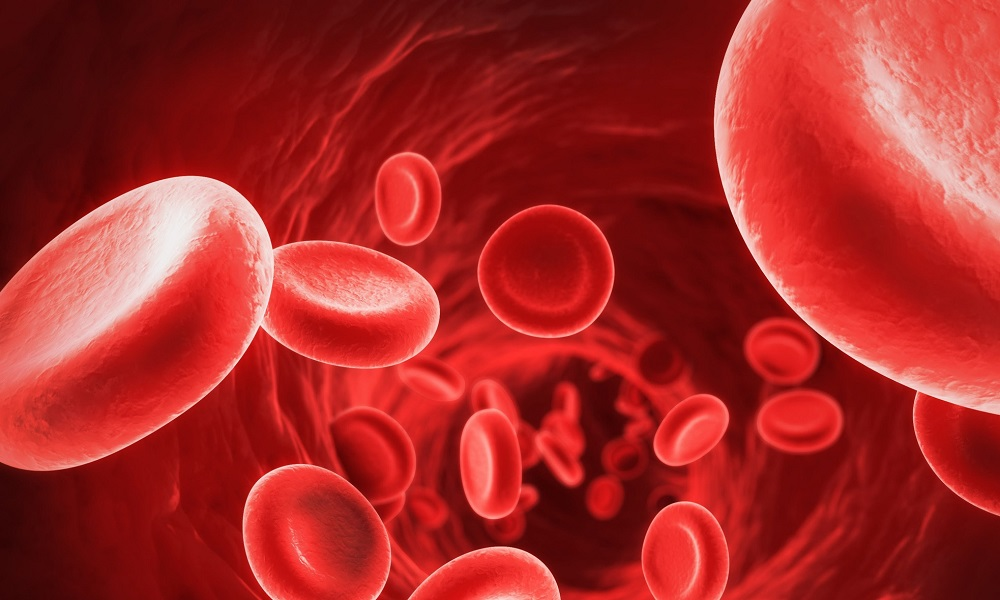 К фактору, провоцирующий появление грыжи в шейном отделе позвоночника, относится замедление местного кровообращения