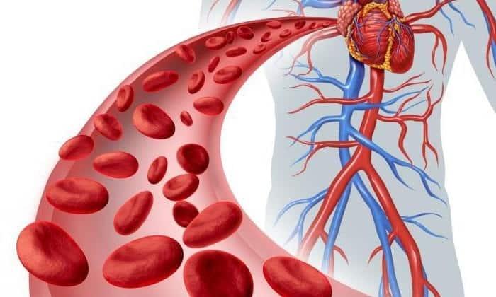 С помощью катания на велосипеде улучшается кровообращение